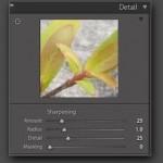 Come aumentare la nitidezza di una foto con Photoshop o altri editor di immagini