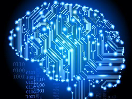 Test: Scopri quale parte del cervello usi di più!