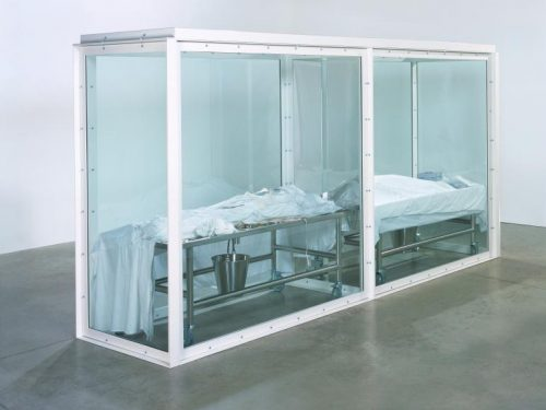 Damien Hirst, il signore delle mosche: (ovvero) l'artista che gioca con la morte