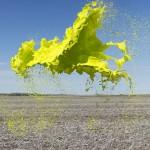 Sembrano bombe di colore sospese nell'aria ma sono frutto di abili scatti fotografici: cosa sono?
